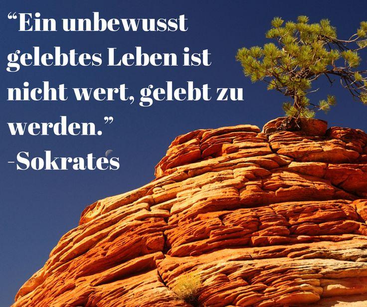 Lebe bewusst!  http://selbst-management.biz/