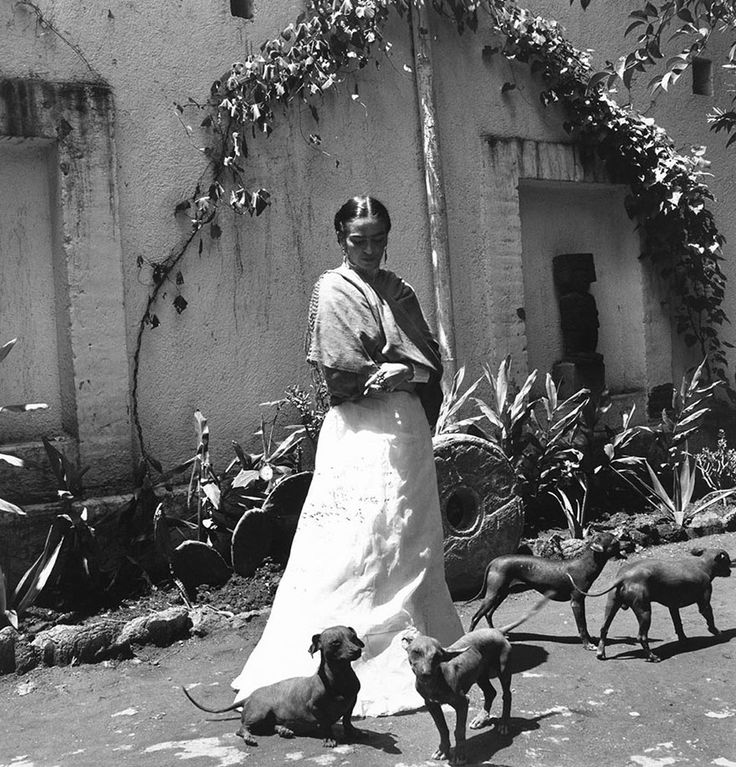 frida her life Home page fridamania a short biography frida kahlo was born on july 6, 1907 in the house of her parents, known as la casa azul (the blue house), in coyoacan.