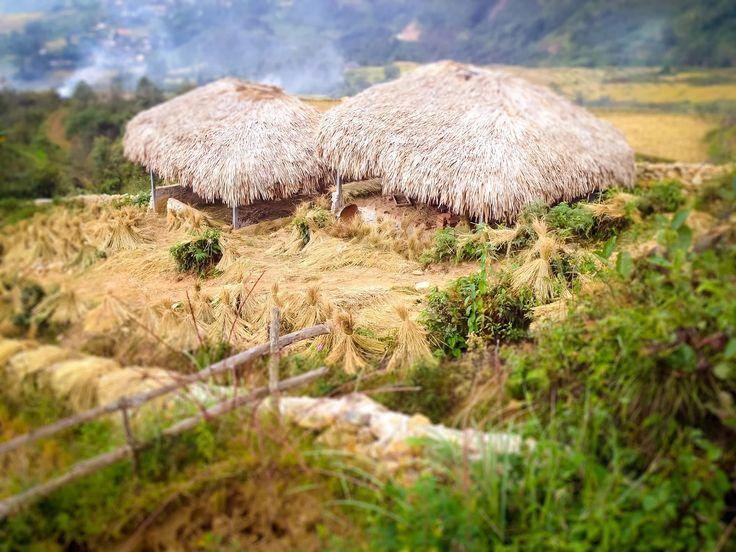 #sapaattractive #Travelmagazine: Small house in Sapa, Lao Cai