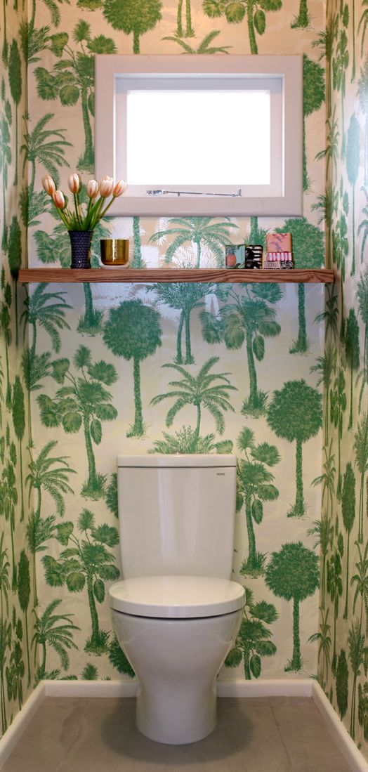 Tropical toilet