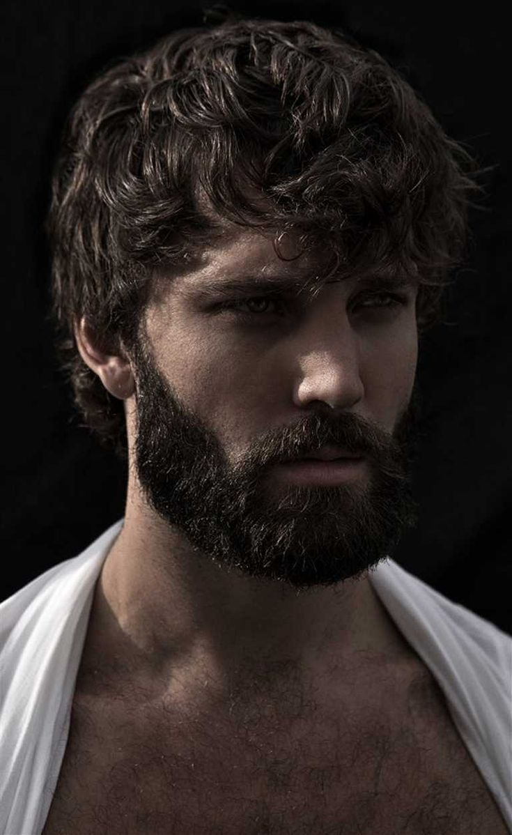 Best 25 Diffe Styles Of Beards Ideas On Hair And Beard Just For Men