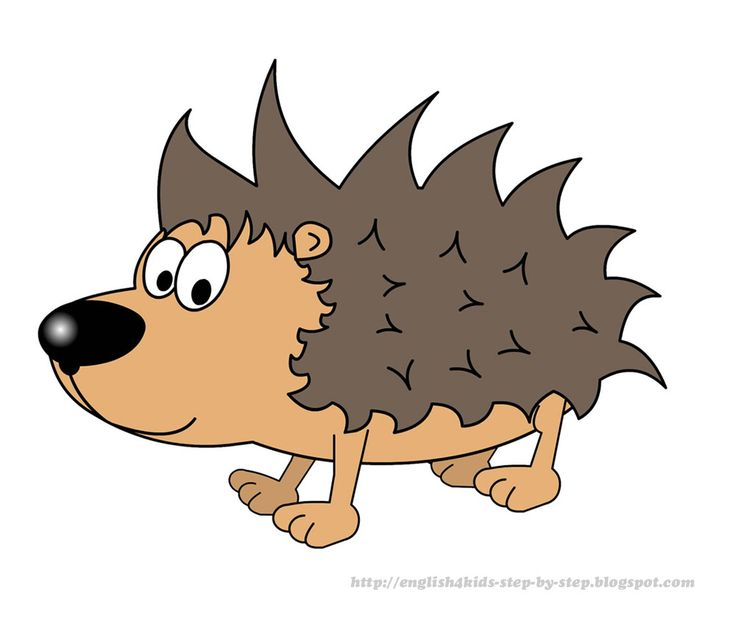 cute cartoon hedgehog clip art