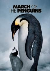 March of the Penguins Movie Poster Image