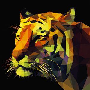 Quadro con Tigre #tigre #tiger #art #canvas #quadro #quadri #abstract #madeinitaly #paintings #pictures #pintdecor #graphicollection