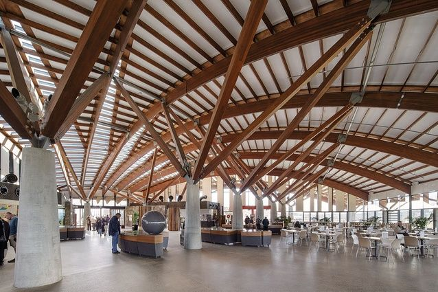The vaulted roof inside the Visitor Centre features radiating timber beams…