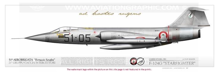 ITALIAN AIR FORCE . AERONAUTICA MILITARE : Manufacturer: FIAT Model: F-104G Starfighter