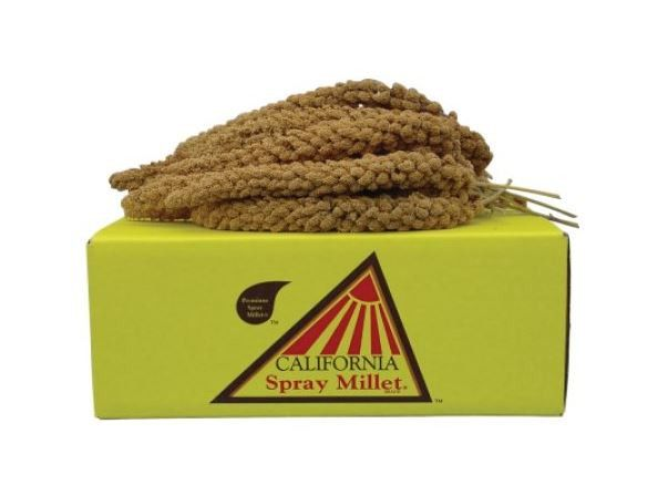 California Golden Farm Products Spray Millet Bird Treats 5 lbs