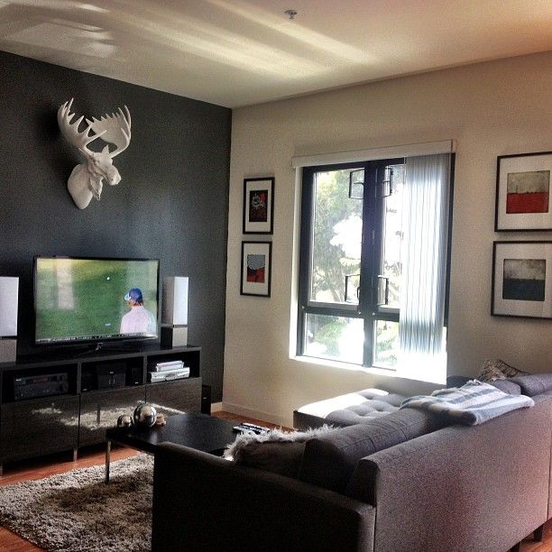 Z Gallerie Moose Head ... mancave is complet...
