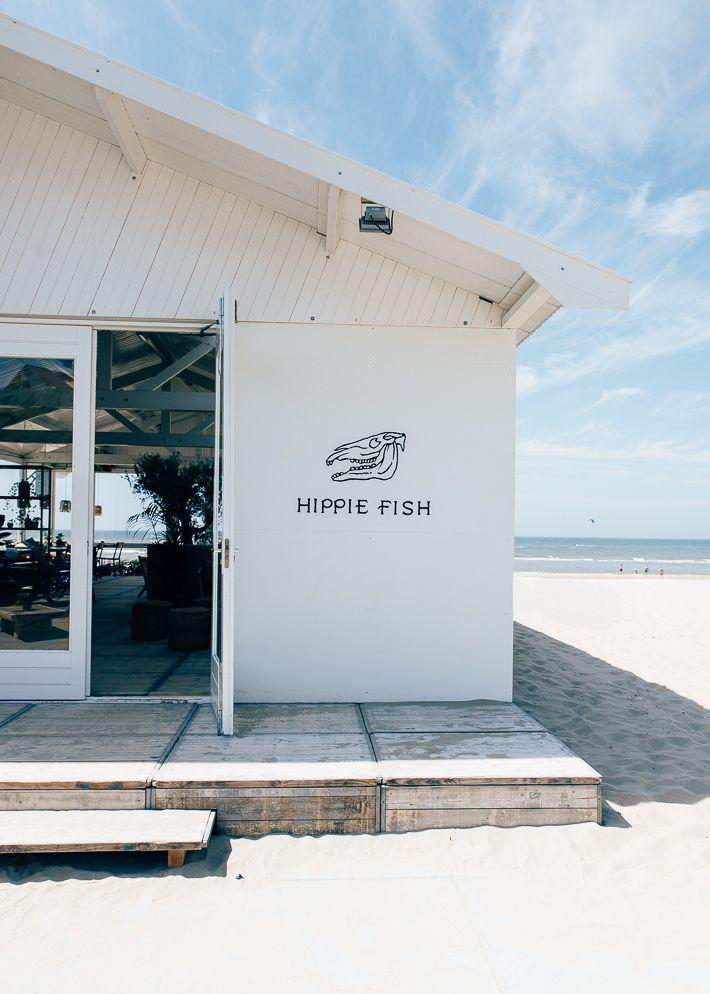 hippie fish zandvoort ❥