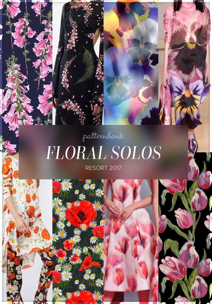 Floral Solos » Pink Flowers 02 by dancelstudio / Rachel Zoe / Dreamy Pansy Floral by Mercedes Quevedo / Christopher Kane / Alexis Mabille / Daisies and Anemones by Flavia Suguitani Cintra Esteves / Christian Sirano / Painted Tulip Floral by Jo Mitchell