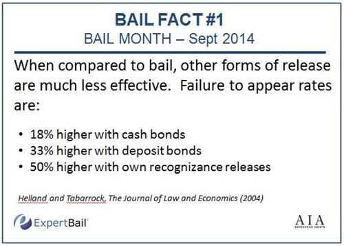 11 best Tips for Bail Bondsman images on Pinterest Bail bondsman - Bail Agent Sample Resume