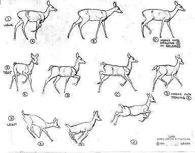 Deer sequence art, for reference