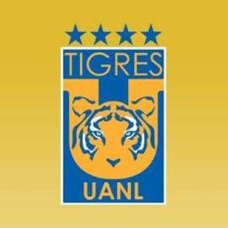 Blog de palma2mex : Tigres estrena nuevo escudo