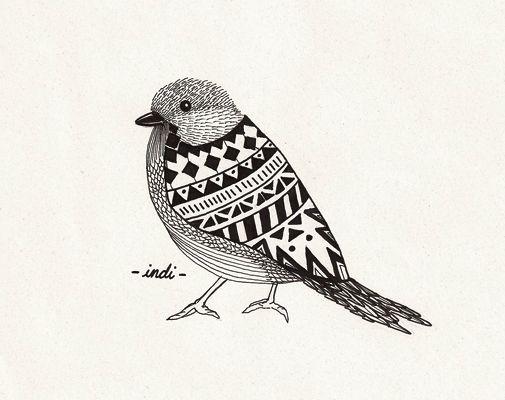 Indi Maverick bird illustration // dibujo pajaro