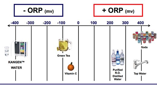 Oxidation Reduction Potential! What a mouthful! Basically, negative numbers are anti-aging. Positive numbers oxidizes you, or ages you more!!!