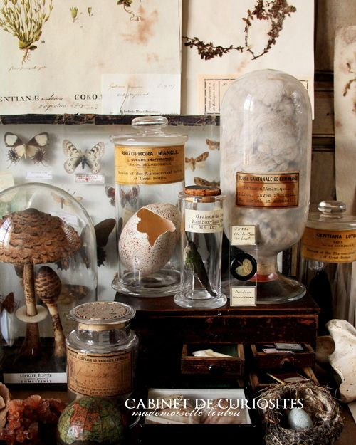 I think if you put anything under glass and stick a yellowed label on it, something magical happens.