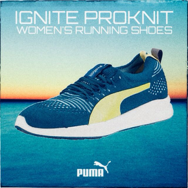 a puma runs with a sudden burst of speed. which process gives the puma the energy it needs