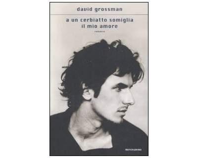 David Grossman, A un cerbiatto somiglia il mio amore
