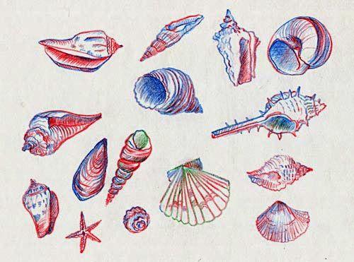 Колонка №3 - специальные цветные карандаши - Рисунок каждый день
