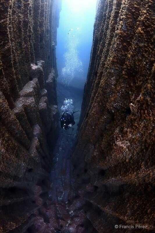 La catedral submarina de Santa Úrsula