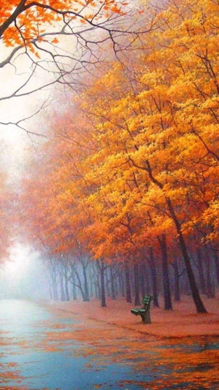 720x1280 wallpaper autumn  park  avenue  benches  trees