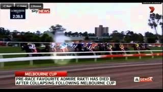 Melbourne Cup 2014 horse dies - YouTube