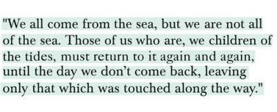 chasing mavericks | Tumblr