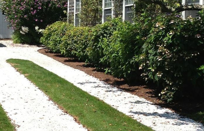 17 best images about driveway on pinterest gardens for Crushed oyster shells for landscaping