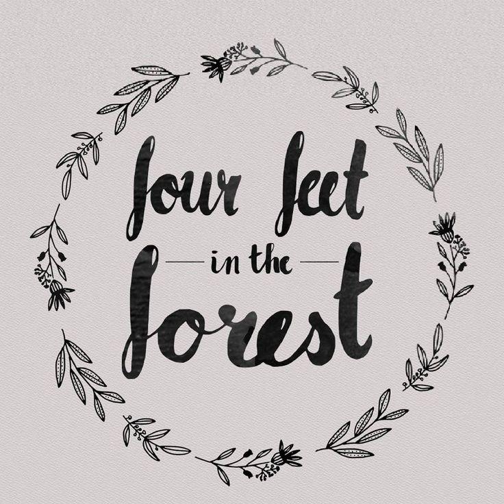Four Feet In The Forest  Ziggy Alberts EP  (c) Maria Scherlies