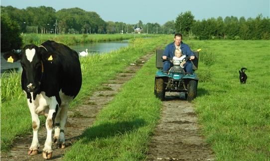 Boer Wibe gaat met dochter Guusje de koeien uit de wei halen op de quad op FarmCamps 't Oortjeshek