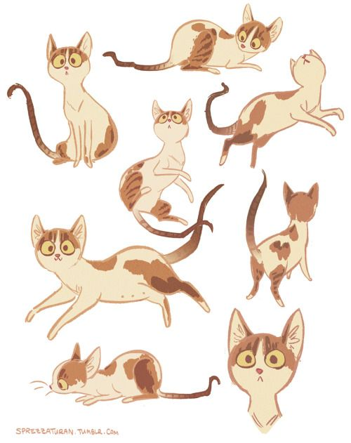 Cartoon Animal Character Design : Best images about cats in art and illustration on