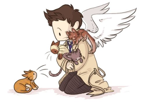 Cas and his family. Because he's a kitten, too. OMFG THIS IS THE CUTEST THING IVE EVER SEEN!!!!!!!!!!
