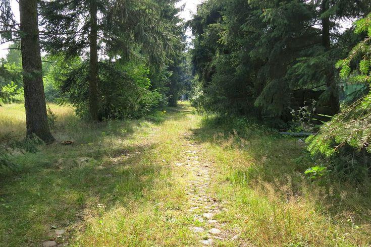 miniwycieczki: Opuszczone miejsca w Warszawie część 2. Opuszczone willa i gazownia