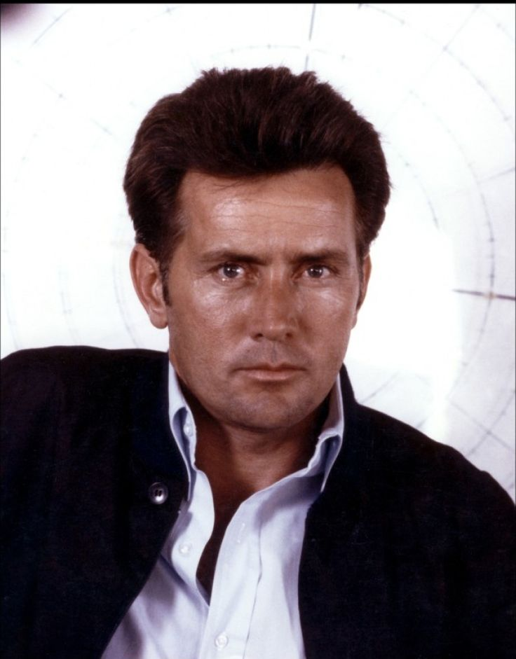 I know have a crush on young/younger Martin Sheen  didn't know he was so handsome. | Martin Sheen Image 16 sur 78