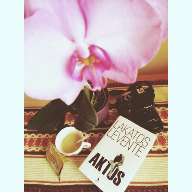My lovely view. #book #Aktus