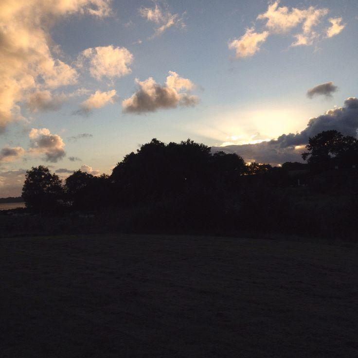 More Sun...