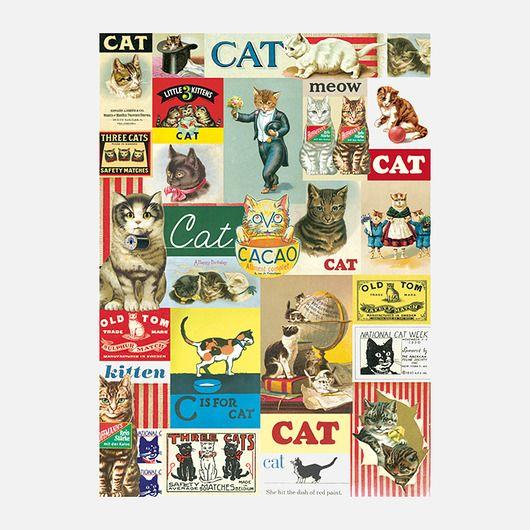 dodatki - plakaty, ilustracje, obrazy - inne-Koty