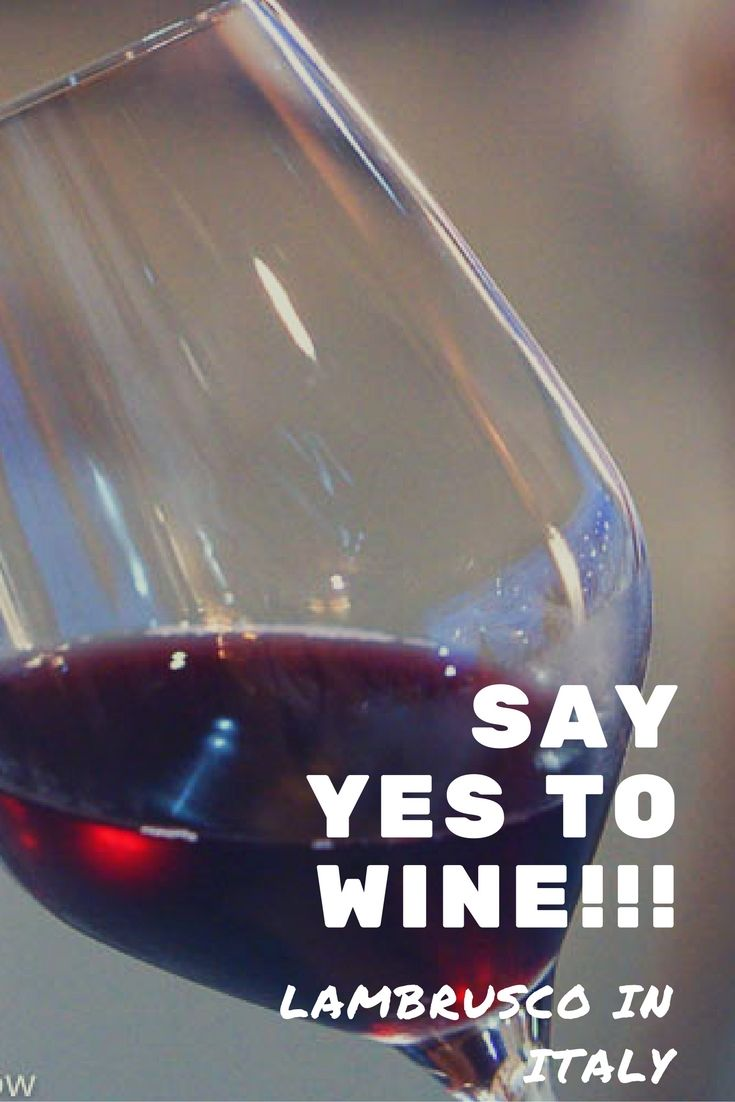 """Just say yes to WINE! And, yes, to Italian wine, and to Lambrusco! Lambrusco is one of the """"secret"""" wines of Italy!"""