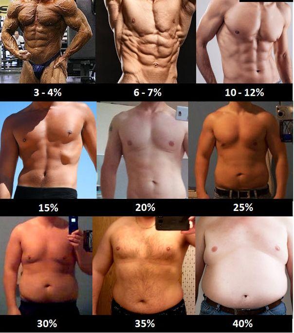 Photos pourcentage de graisse des hommes et femmes