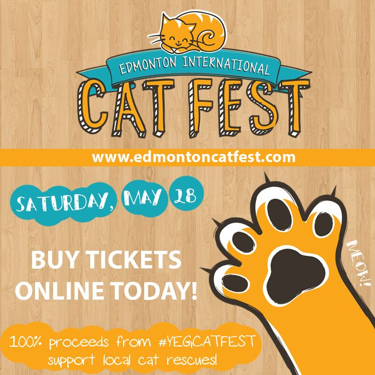 Buy tickets to the Edmonton International Cat Festival