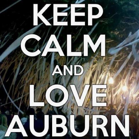 .: Wareagl, Auburn War Eagles, Damn Eagles, War Damn, Auburn Tigers, Auburnwar Eagles, Keepcalm, Keep Calm, Wardamn