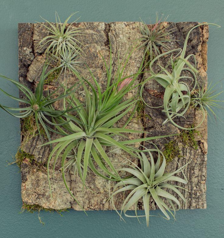 Natural Cork Panels