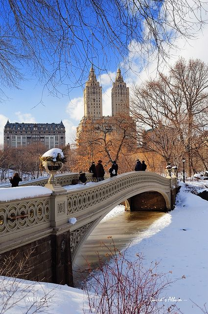 New York City Manhattan Central Park panorama in winter by Songquan Deng
