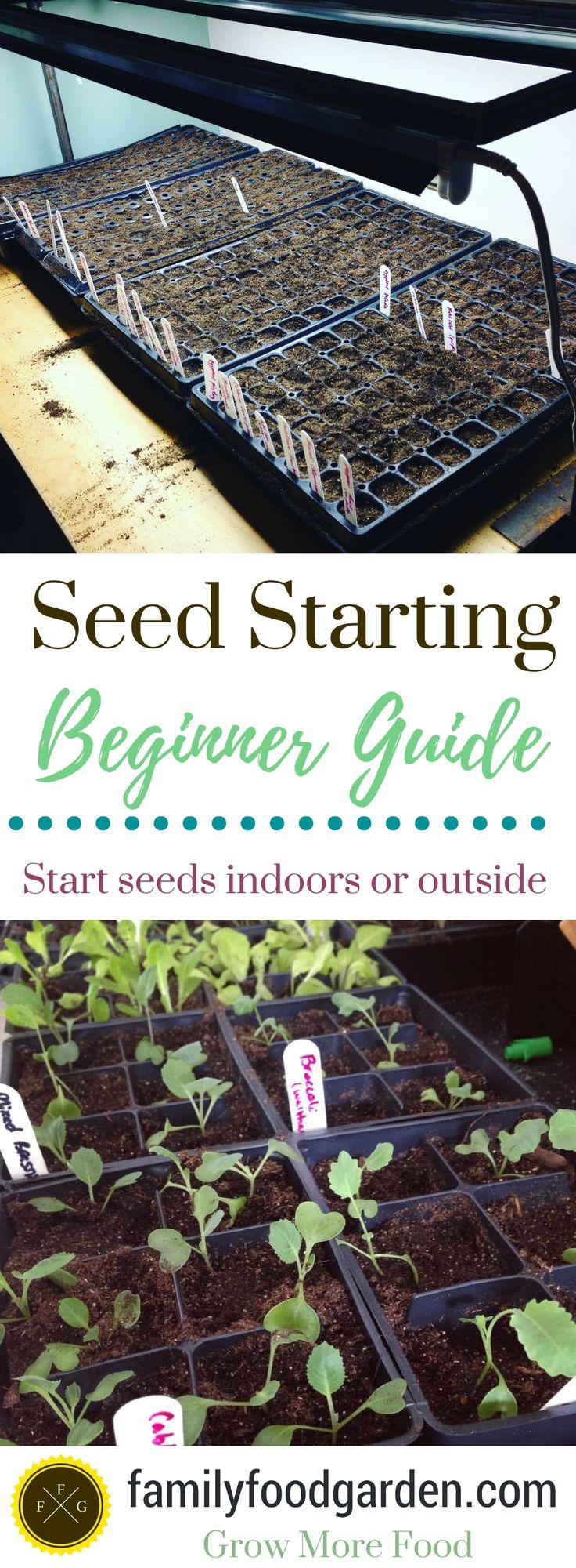 Seed Starting 101- Beginner Seed Starting Guide