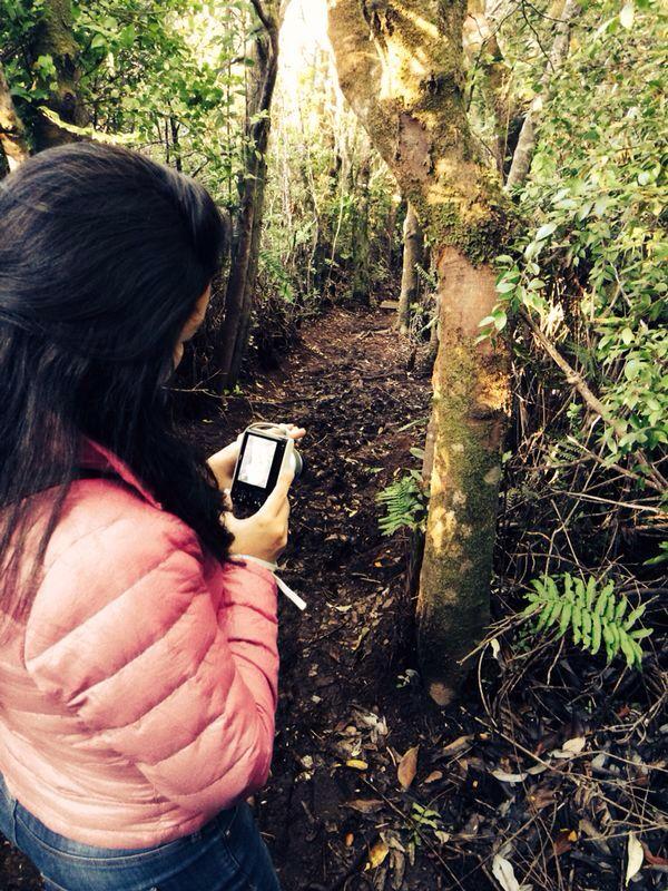 Reserva nacional de Chiloe-Chile