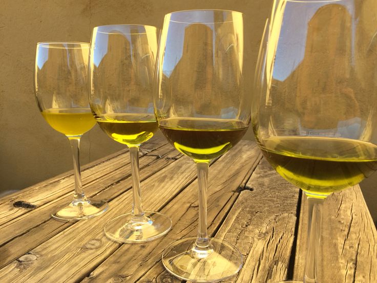 Tasting our olive oils