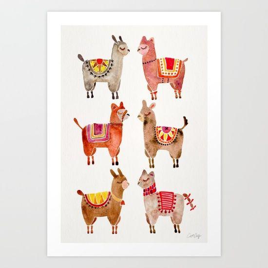 Alpacas, llamas, alpaca, llama...