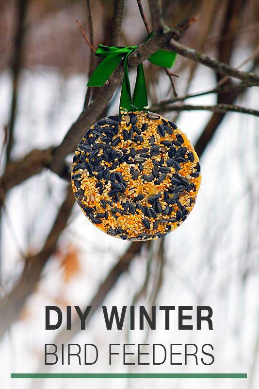 DIY Winter Bird Feeders   Fireflies and Mud Pies