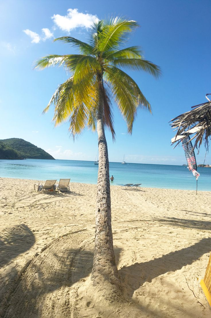 Emerald Beach Resort is located directly on