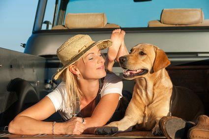 Wie gewöhne ich meinen Hund an den Hundeanhänger? | Ratgeber